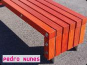 PEDRO NUNES